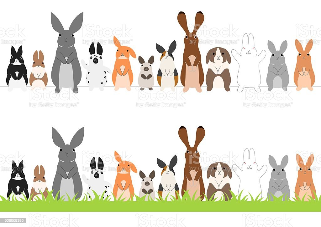 set of standing rabbits in a row vector art illustration
