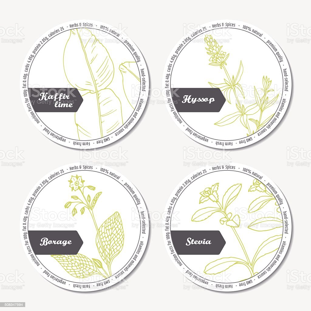 Set of stickers for package design with kaffir lime, borage vector art illustration