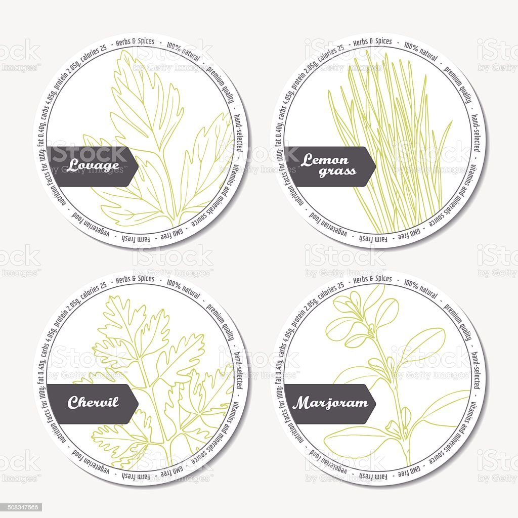 Set of stickers for package design with lovage, lemongrass, chervil vector art illustration