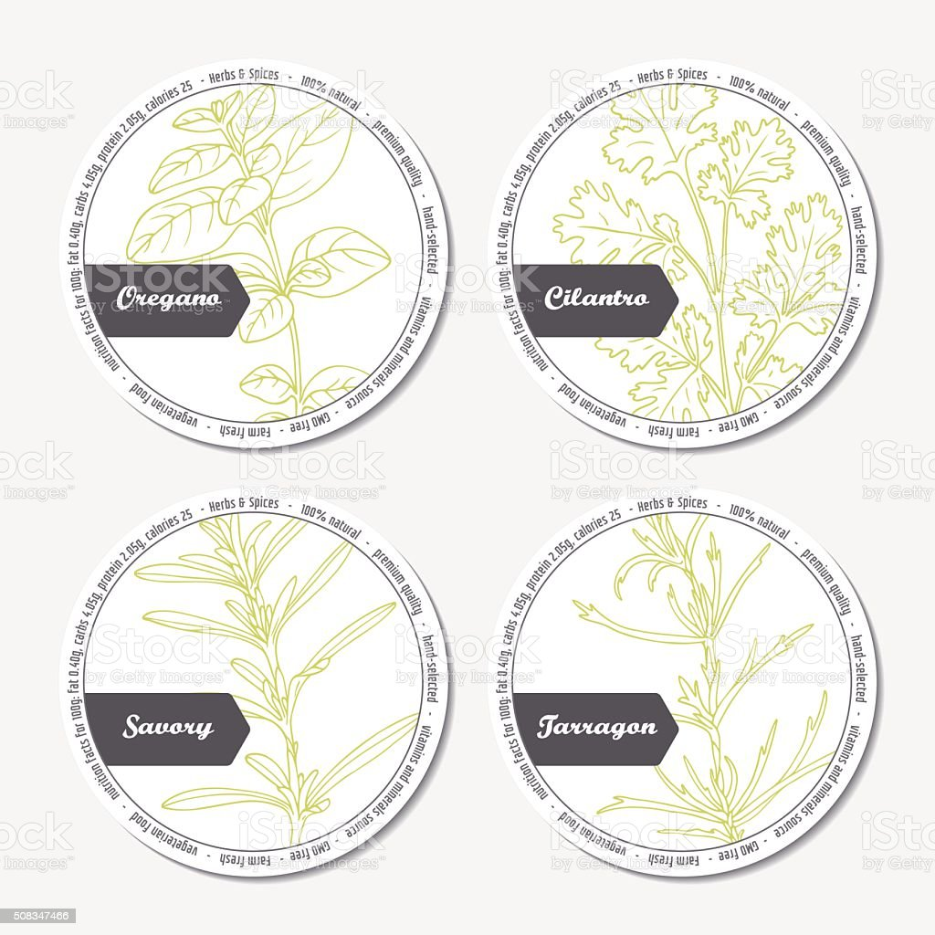 Set of stickers for package design with  oregano, tarragon, savory vector art illustration