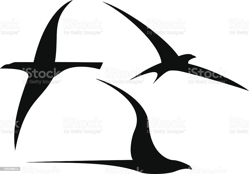 Set of Streamlined Birds vector art illustration