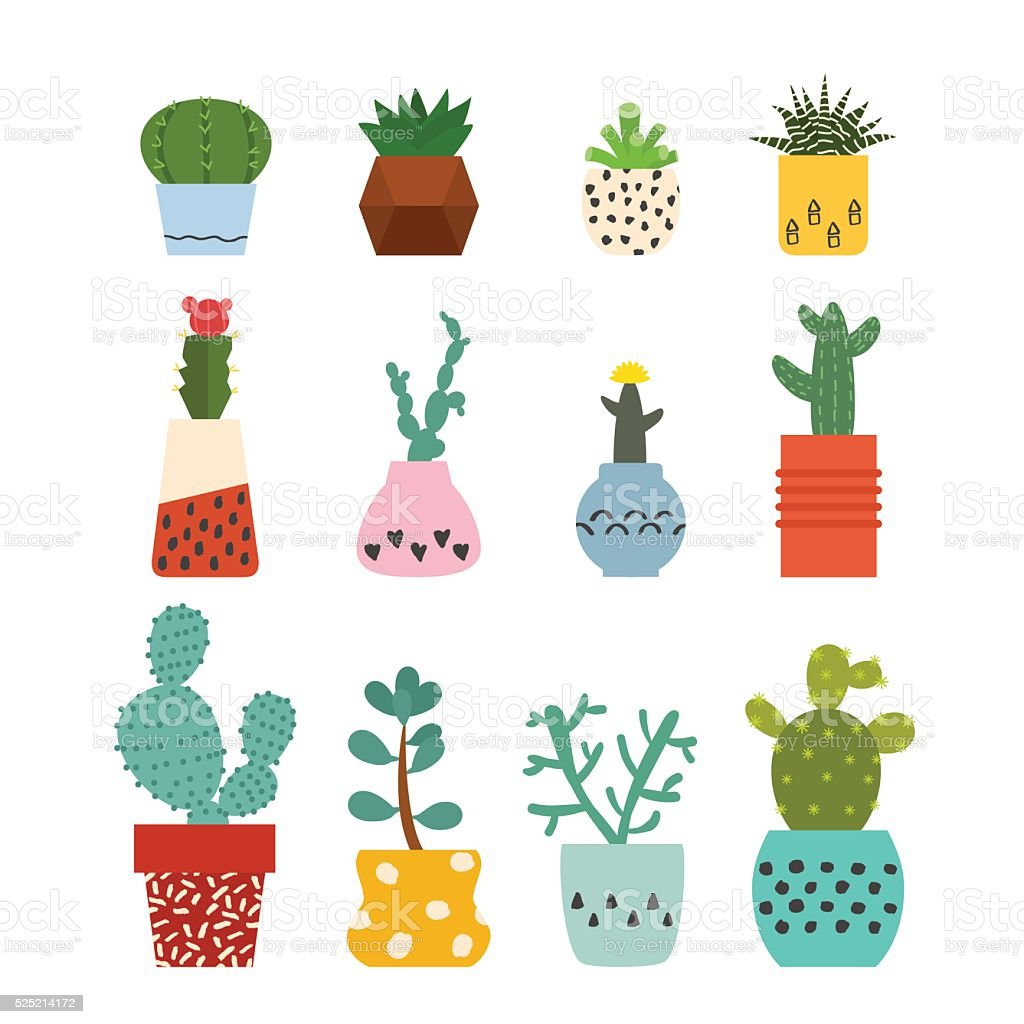 Set of succulent plants and cactuses vector art illustration