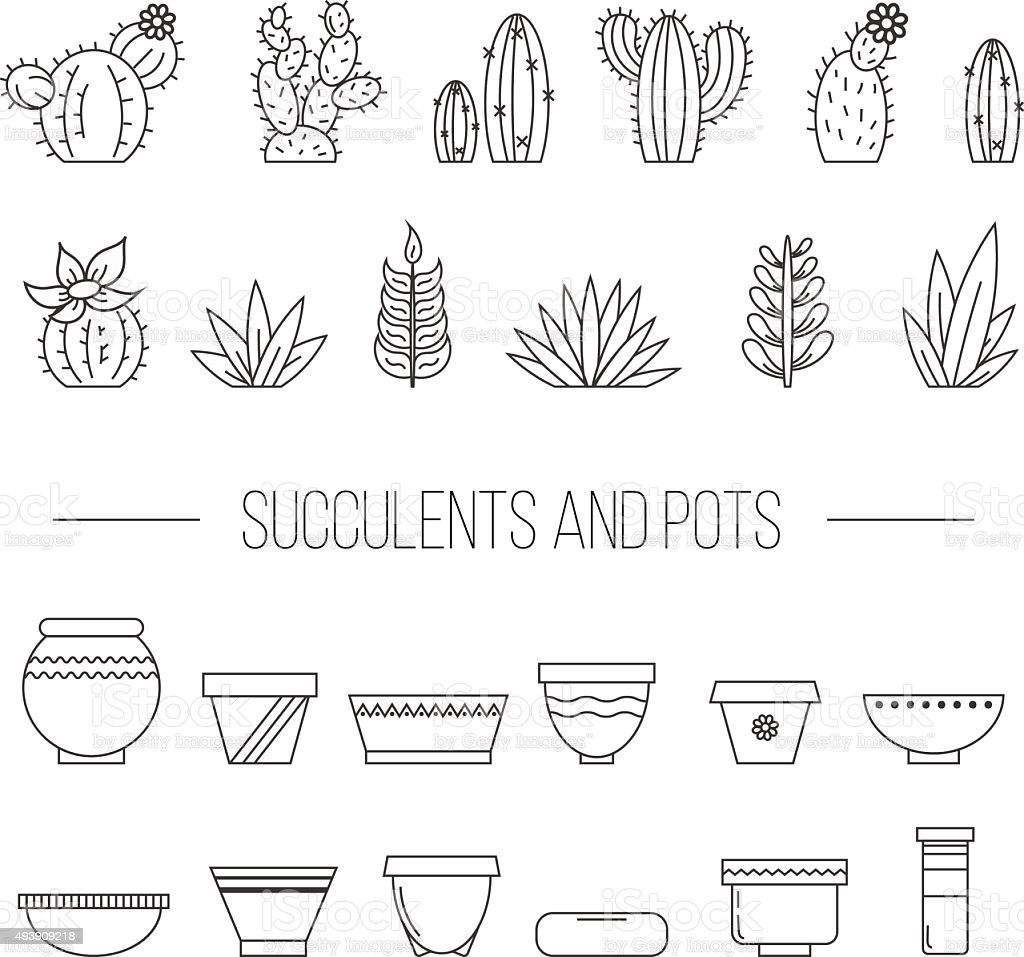 Set of succulent plants, cactuses and pots. vector art illustration