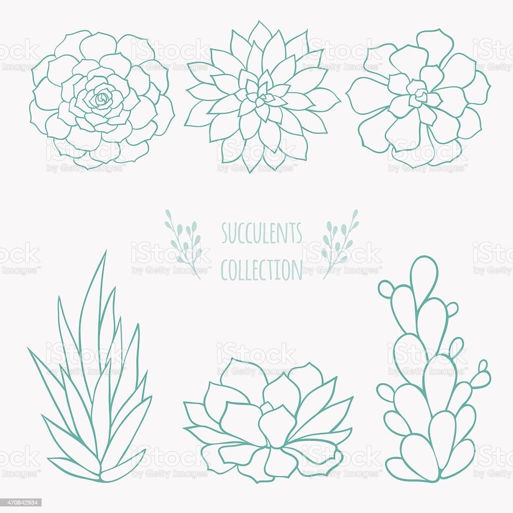 set of succulents vector art illustration