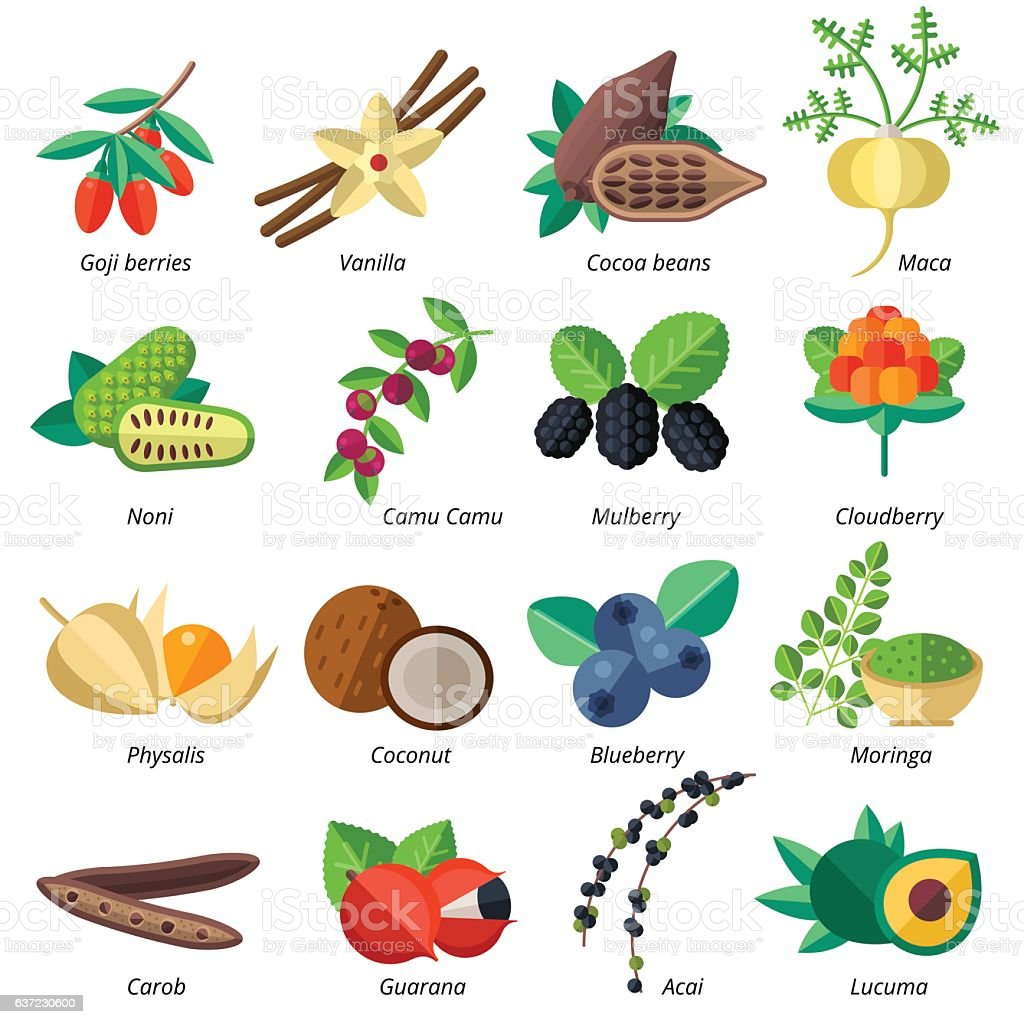 Set of superfood fruits, vegetables, berries, nuts and seeds. vector art illustration