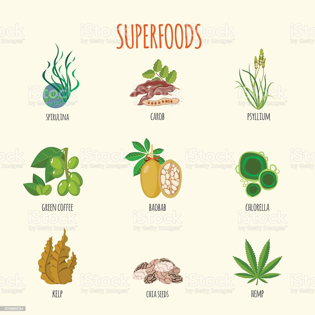 Set of superfoods in flat style vector art illustration