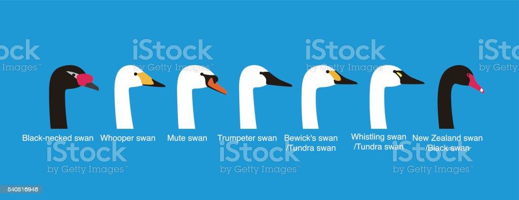 set of swan head vector icons, vecor illustration stock photo