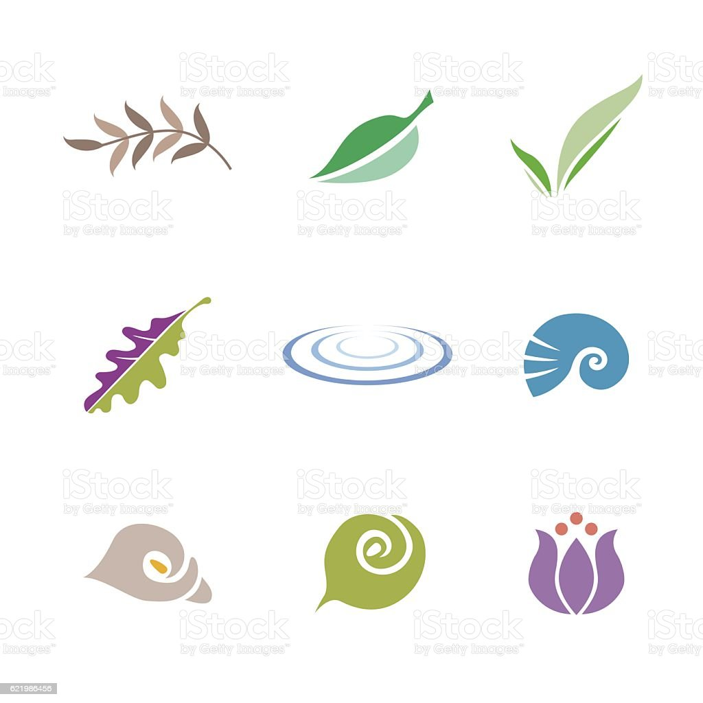 Set of symbols (leaf, shell, flower and ripple) vector art illustration