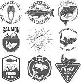 Set of the fresh salmon labels, emblems and design elements.