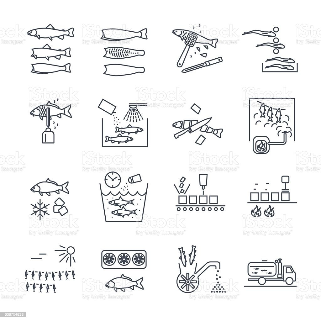 set of thin line icons processing of fish vector art illustration