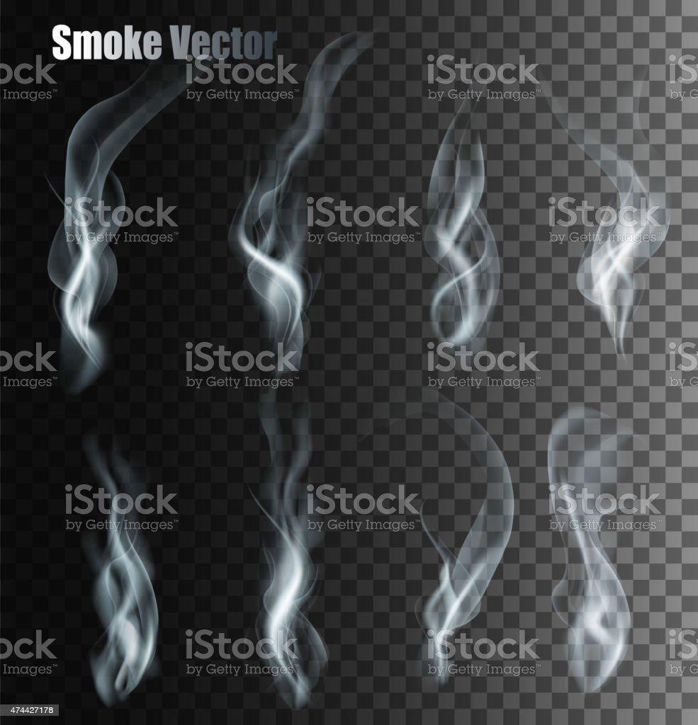 Set Of Transparent Different Smoke Vectors. vector art illustration