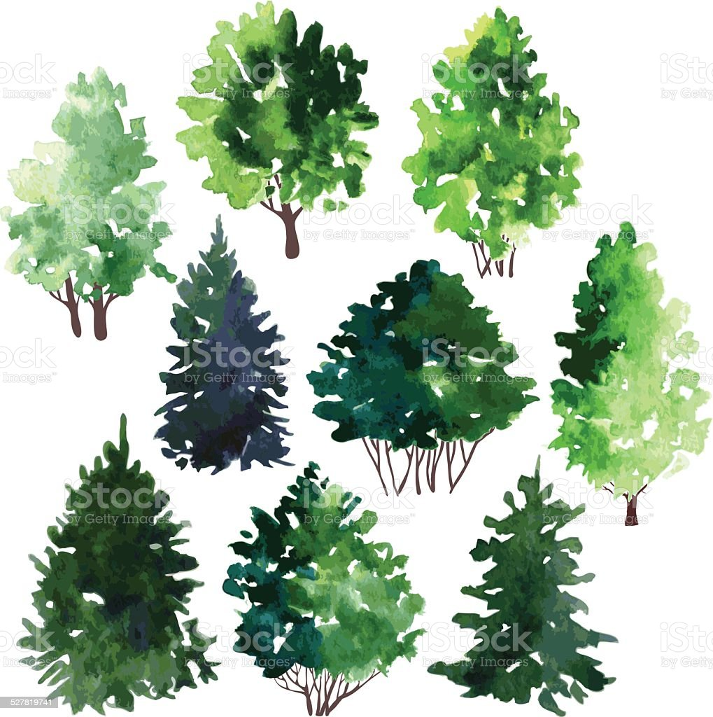 set of trees drawing by watercolor vector art illustration