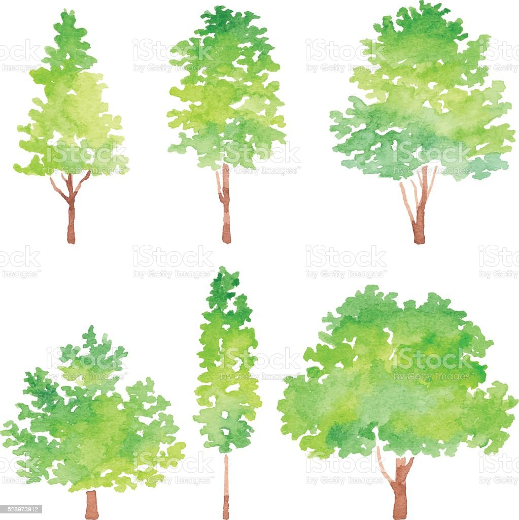 Set Of Trees Watercolor vector art illustration