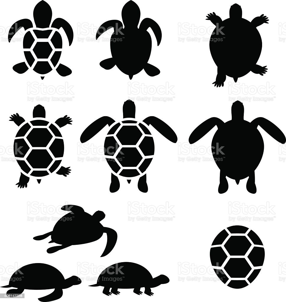 Set of turtle and tortoise silhouette vector art illustration
