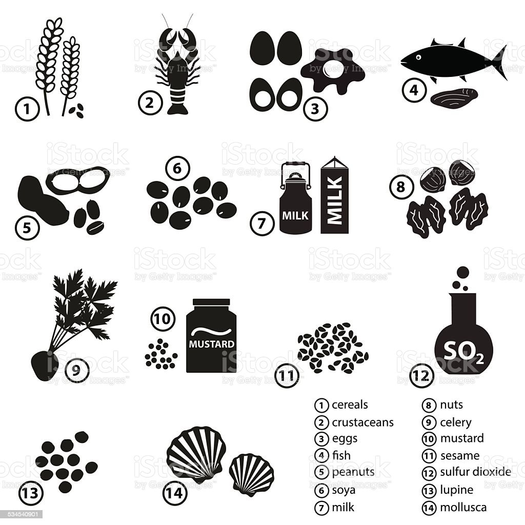 set of typical food allergens for restaurants and meal eps10 vector art illustration