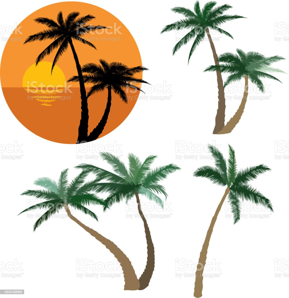 Set of various palm trees. royalty-free stock vector art