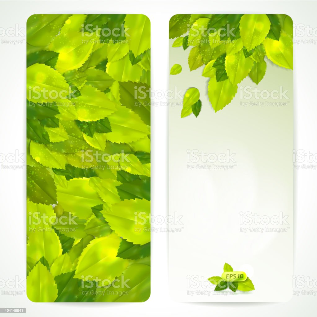 Set of vector banners with beautiful leaves. royalty-free stock vector art