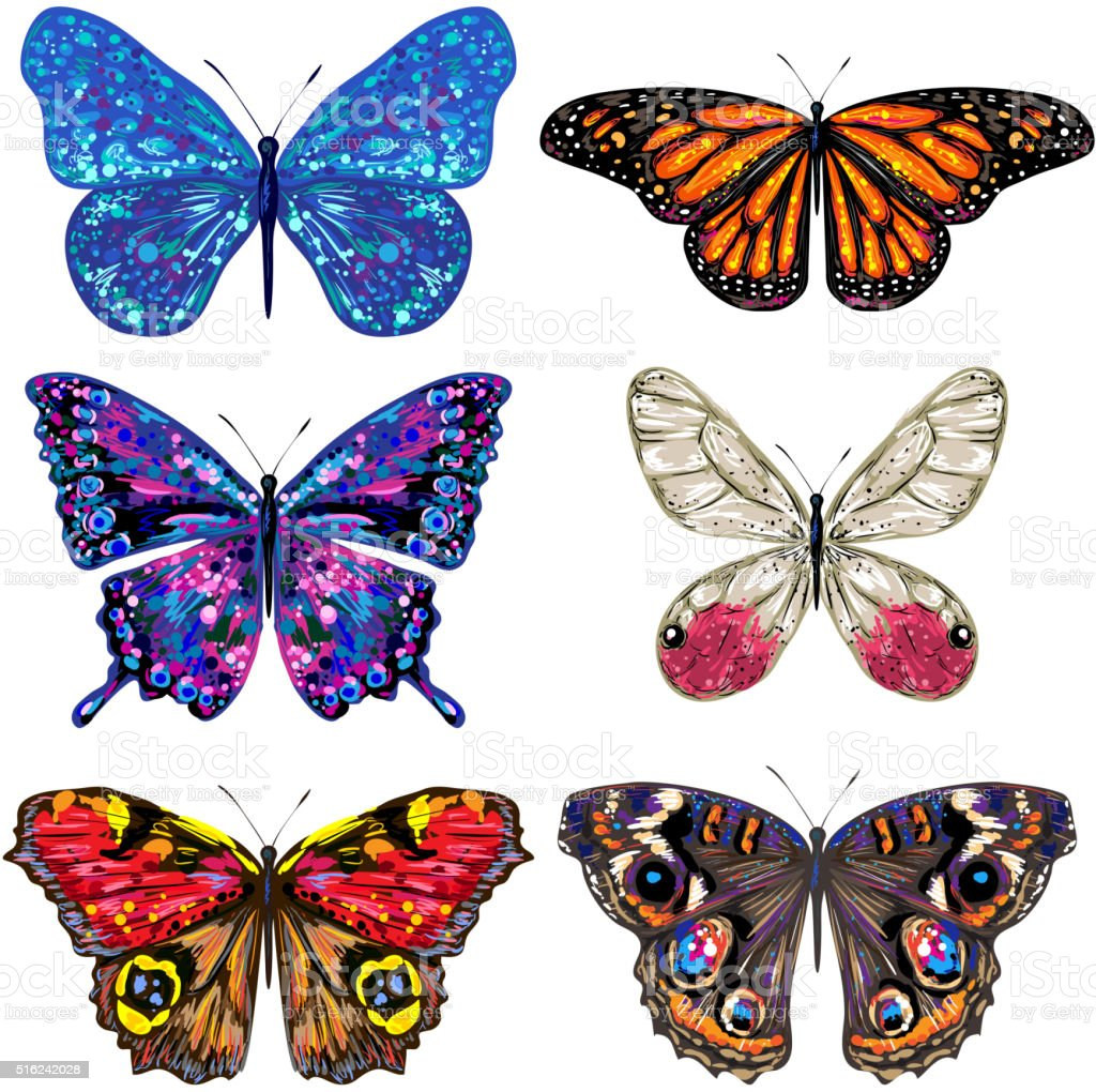 Set of vector colorful butterflies vector art illustration