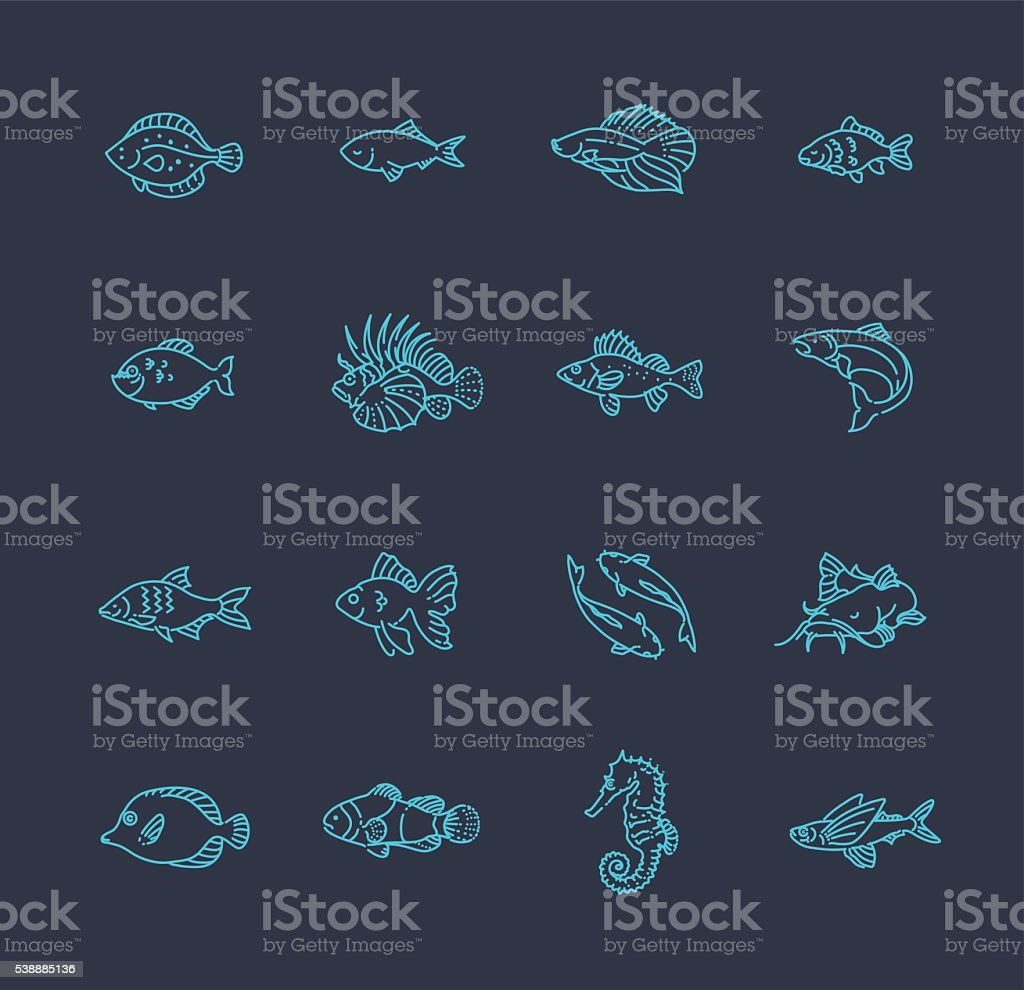 Set of vector fish icons vector art illustration
