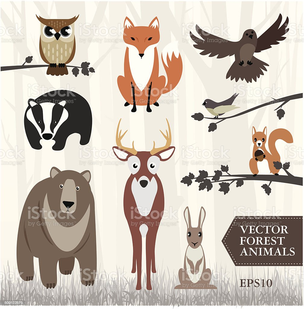 Set of vector forest animals vector art illustration