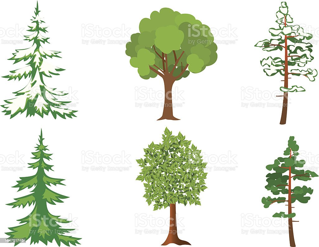 set of vector green and white trees royalty-free stock vector art