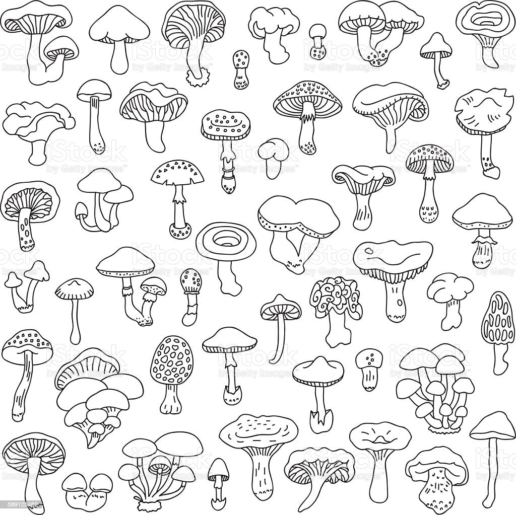 Set of vector hand-drawn, doodles mushrooms. vector art illustration