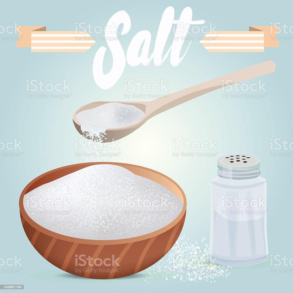 Set of vector salt shaker, full wooden bowl and spoon vector art illustration