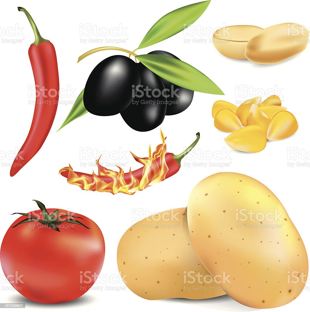 Set of vegetables and fruits royalty-free stock vector art