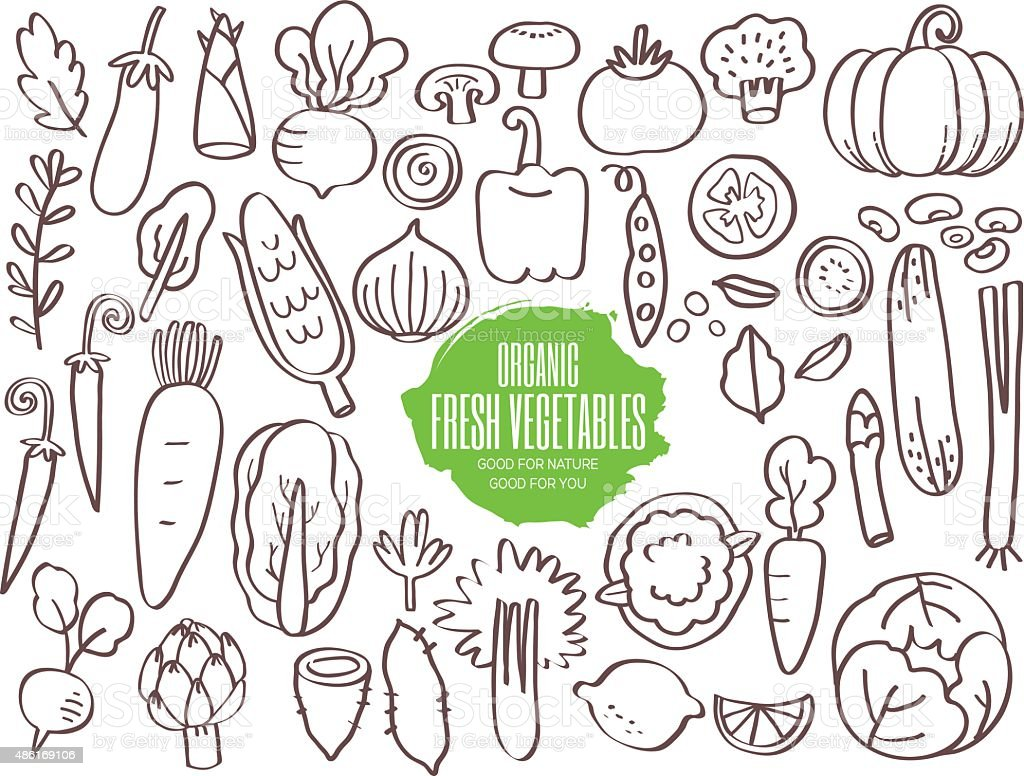 Set of vegetables doodles vector art illustration