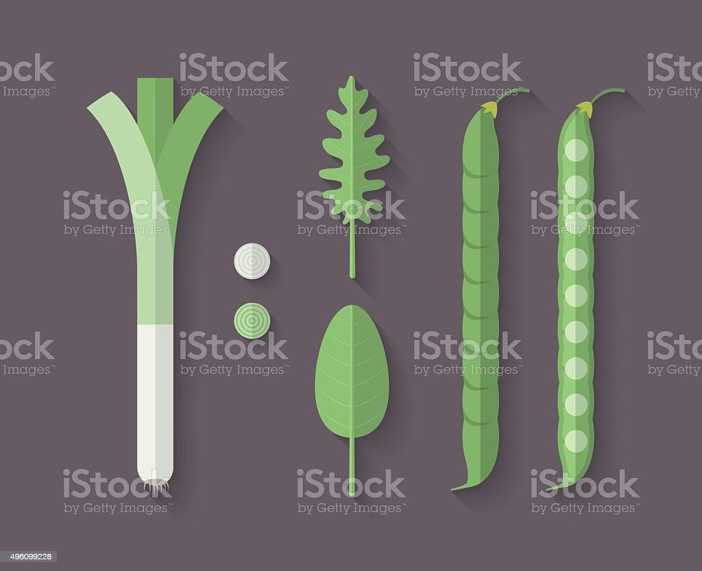 Set of Vegetables in a Flat Style - Leeks vector art illustration