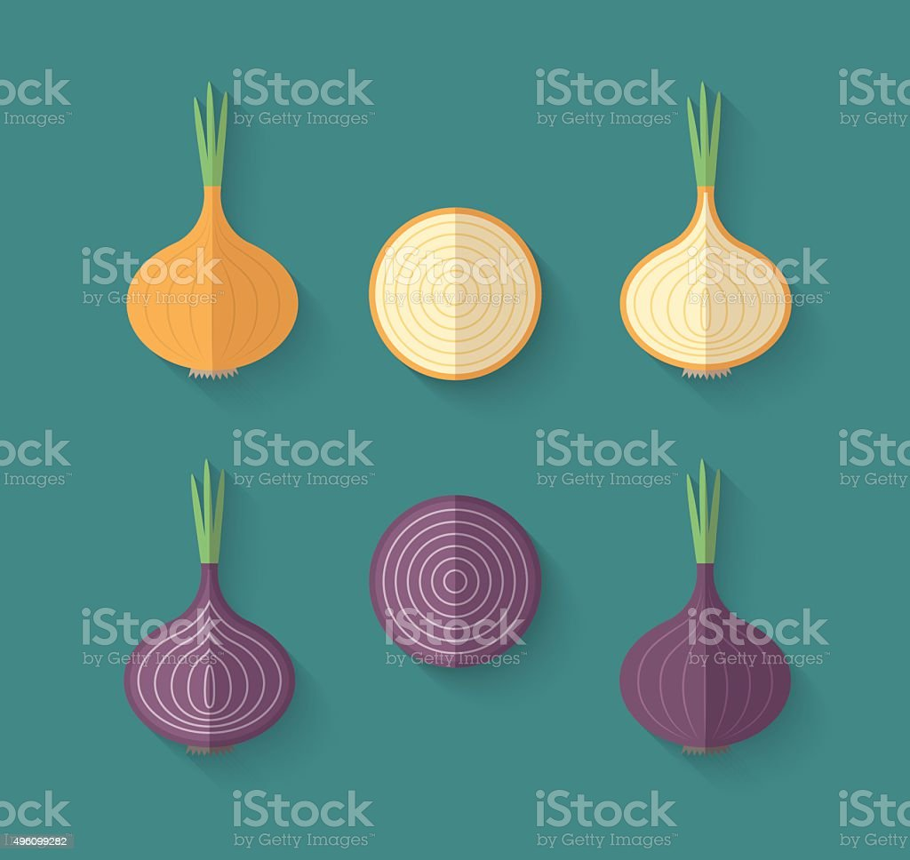 Set of Vegetables in a Flat Style - Onion vector art illustration