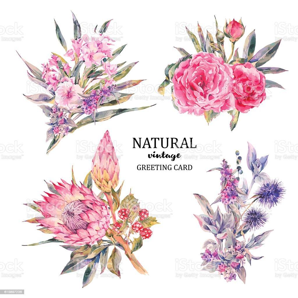 Set of vintage floral vector bouquet roses, protea vector art illustration