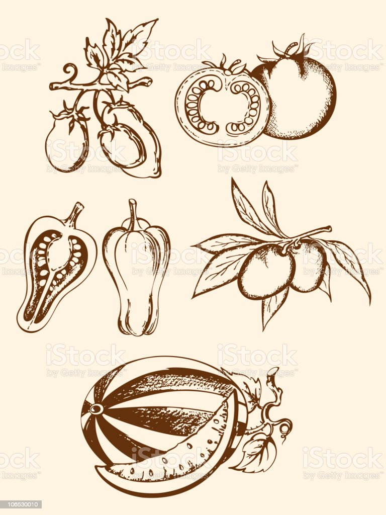 set of vintage vegetable icons royalty-free stock vector art