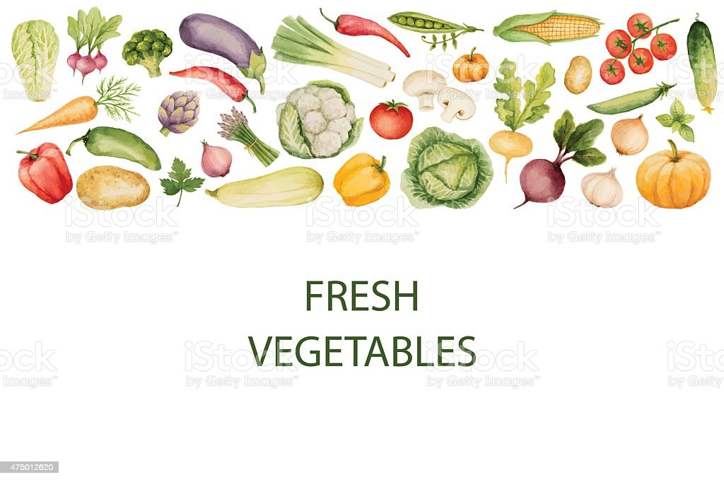Set of watercolor vegetables. vector art illustration