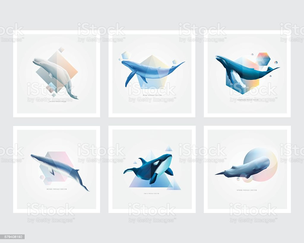 Set of whales with colorful geometric polygons vector art illustration