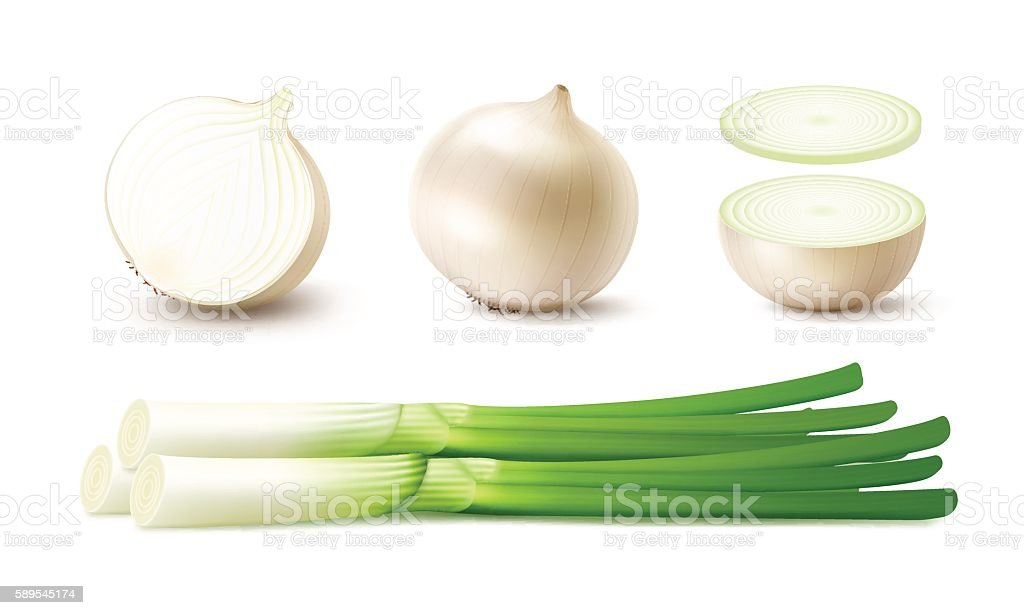 Set of Whole and Sliced Onion Bulbs with Green Onions vector art illustration