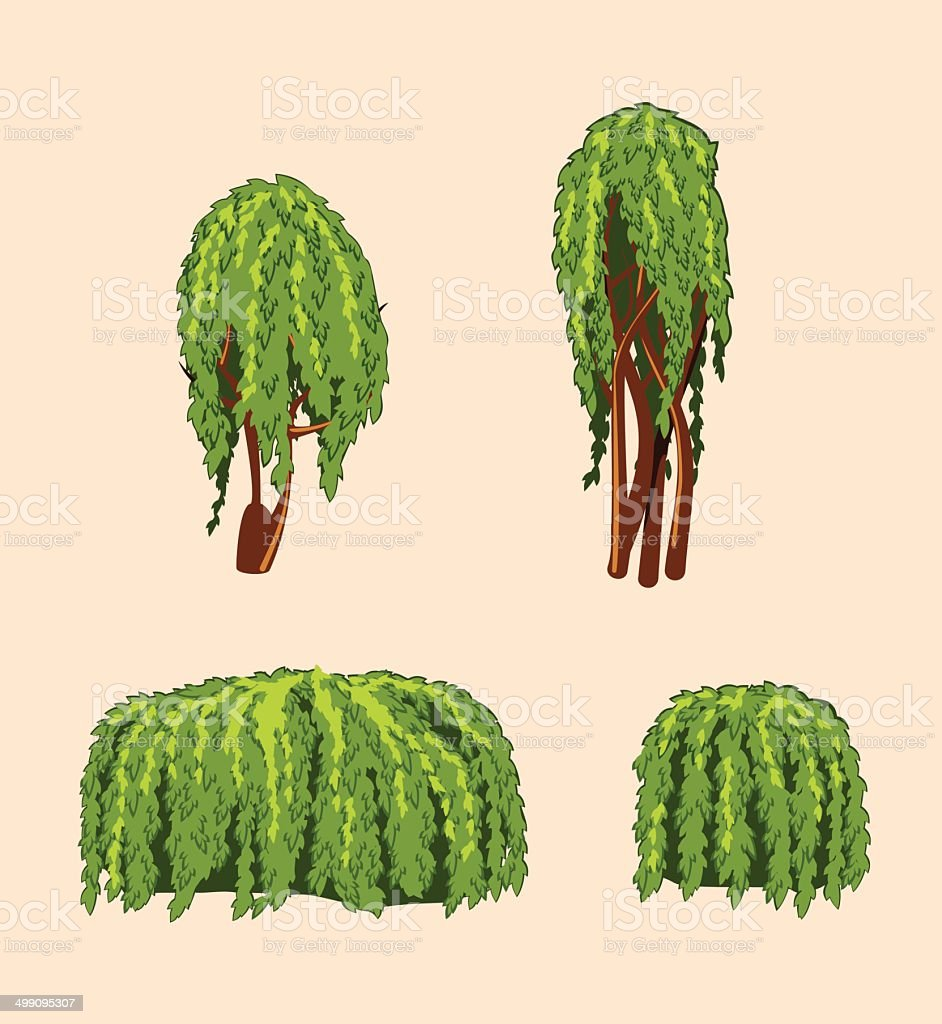 set of willow trees and bushes vector art illustration