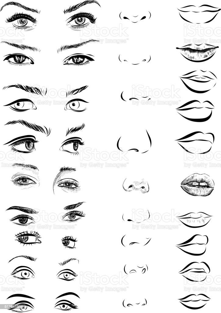 Set of woman eyes, lips, eyebrows and noses as black vector art illustration