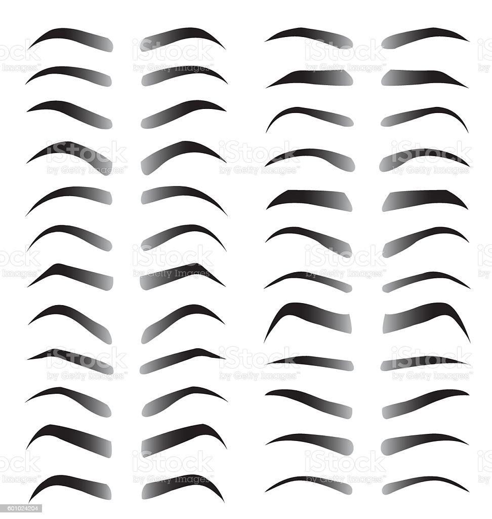 Set of women eyebrows for beauty concept vector art illustration