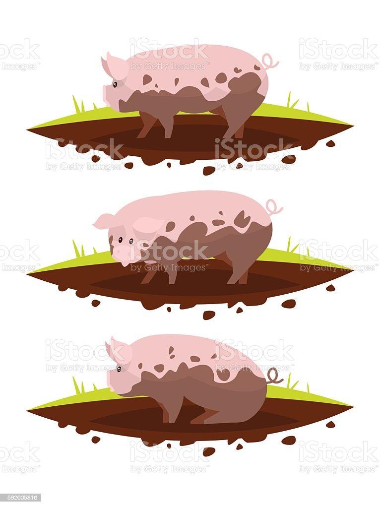 Set pig in a puddle of mud. Vector illustration vector art illustration