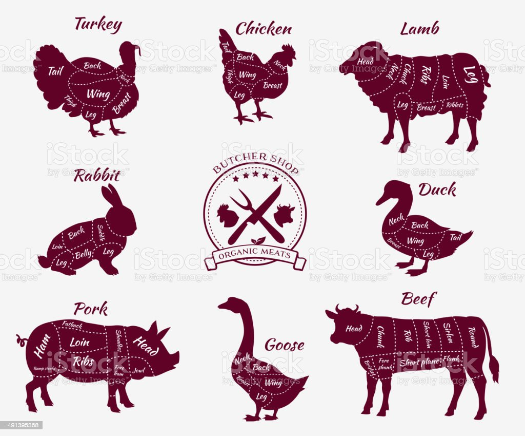 Set Schematic Vew of Animals for Butcher Shop vector art illustration