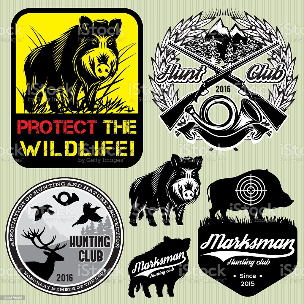 set template with wild boar for hunting clubs vector art illustration