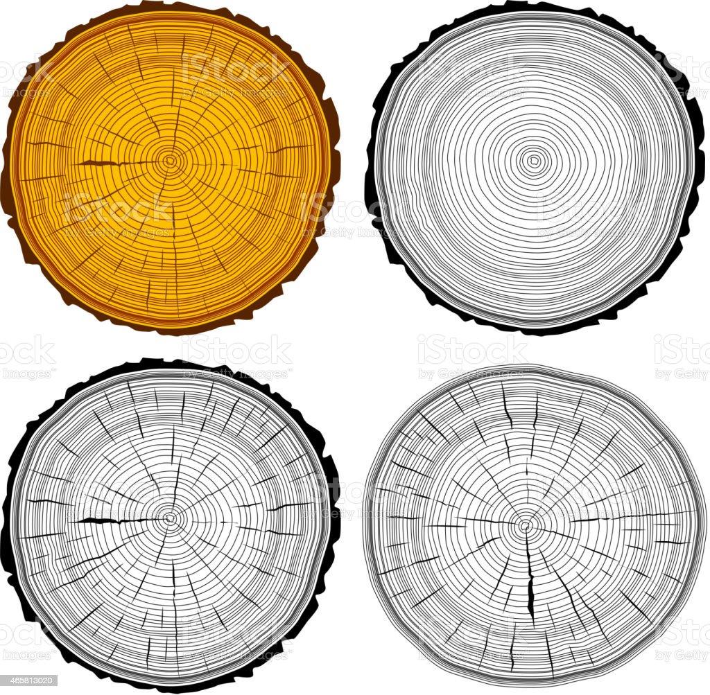 Set tree rings saw cut tree trunk background. vector art illustration