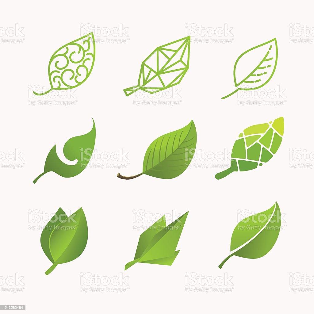 Set vector images of leaves vector art illustration
