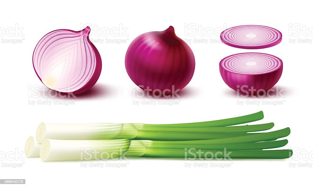 Set Whole and Sliced Red Onion Bulbs with Green Onions vector art illustration
