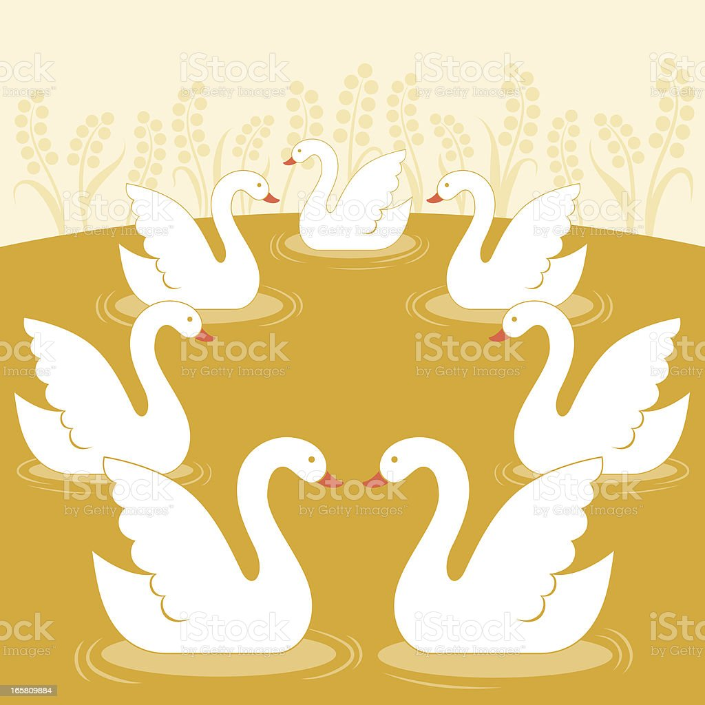 Seven Swans a Swimming royalty-free stock vector art
