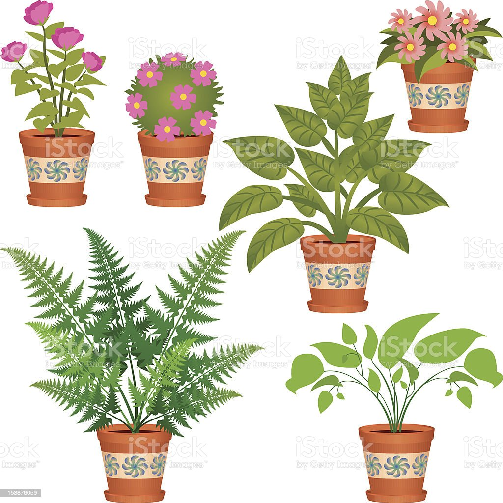 Several Plants royalty-free stock vector art