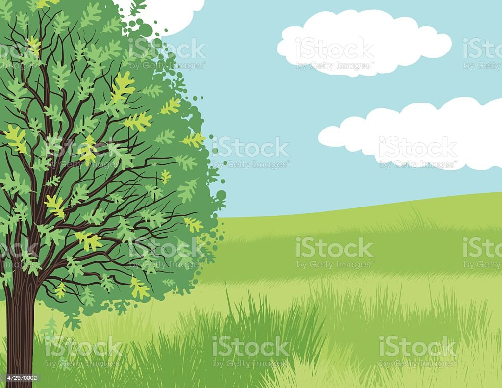 Shade Tree in A Park With Green Grass vector art illustration