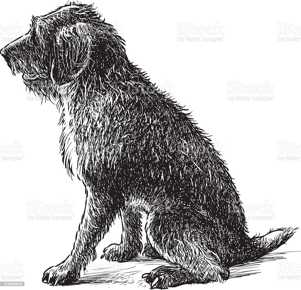 shaggy dog sitting vector art illustration