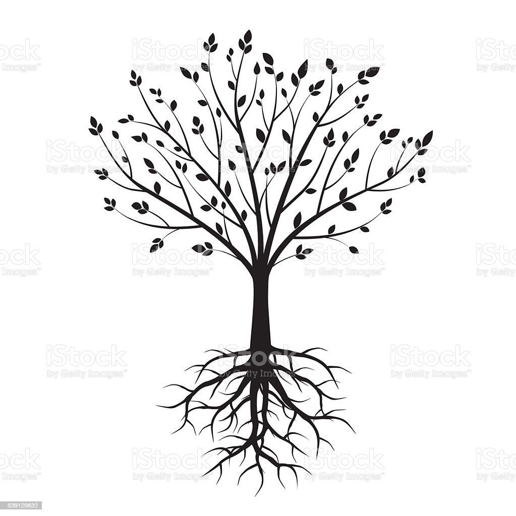 Shape of Black Trees. Vector Illustration. vector art illustration